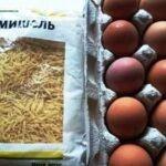 Жареная вермишель с яйцом