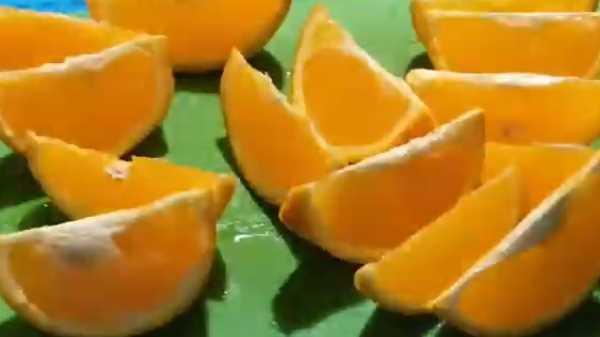 Утка с апельсинами в духовке в фольге