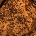 Грудка индейки в фольге в духовке