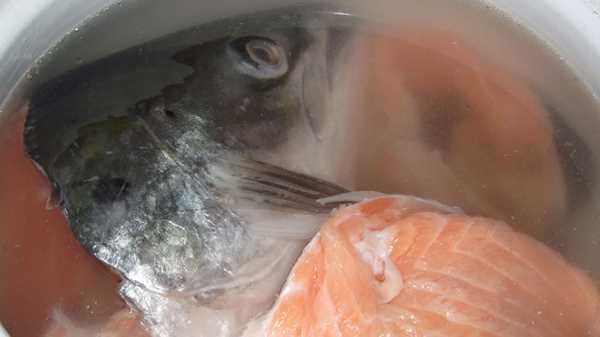 Как и сколько варить красную рыбу
