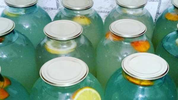 Как закатать березовый сок на зиму в банках