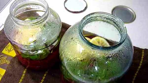 Компот Мохито с мятой и лимоном на зиму