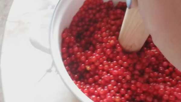 Как и сколько варить варенье из красной смородины