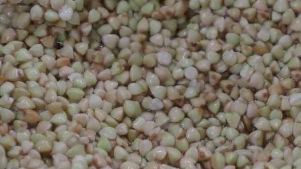 Как и сколько варить зеленую гречку
